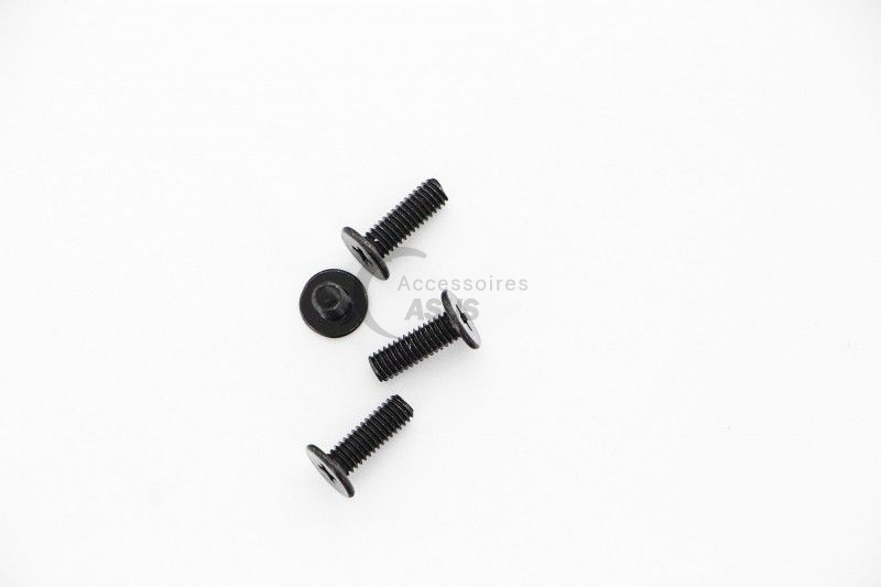 Screw kit for Asus Screen